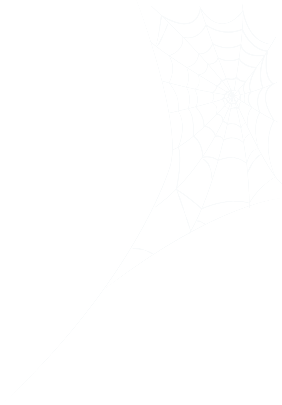 Cobweb and Spider